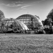 Annemarie Hubacher-Constam y Hans Otto Hubacher. Invernaderos Jardín Botánico de Zurich.